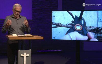 «Vintreet, grenene og frukten» av pastor Eilif Tveit